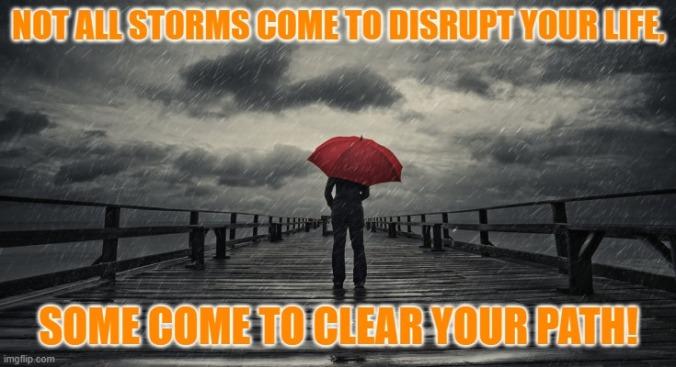 Meme storm